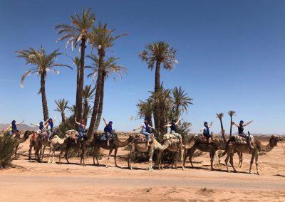 Kim Crosbie - Morocco - lc- 19-11